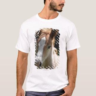face of foal T-Shirt