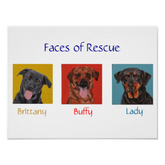Faces of Rescue Poster