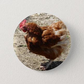 Factory Farm Hen 2 Inch Round Button