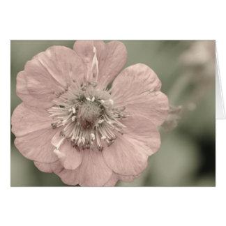 Faded Flower Card
