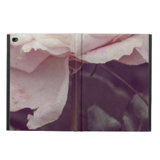 Faded pink rose powis iPad air 2 case