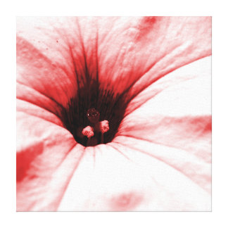 Faded  red flower macro picture square canvas print