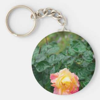 Fades wet autumn rose with blur keychain