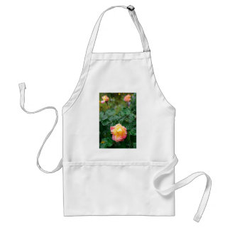 Fades wet autumn rose with blur standard apron