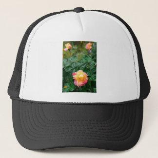 Fades wet autumn rose with blur trucker hat