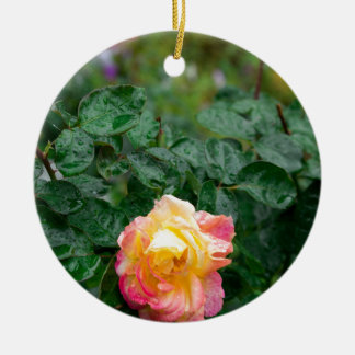 Fades wet rose with drops of  rain ceramic ornament
