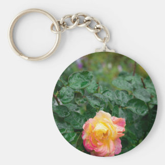 Fades wet rose with drops of  rain keychain