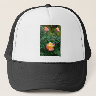 Fades wet rose with drops of  rain trucker hat