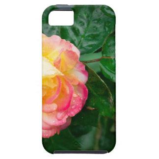 Fading autumn rose iPhone 5 case