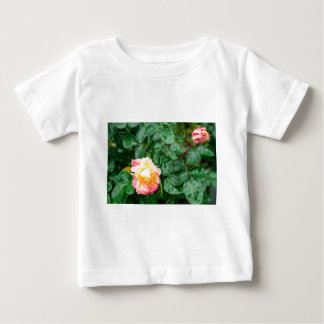 Fading autumn rose with droplets baby T-Shirt