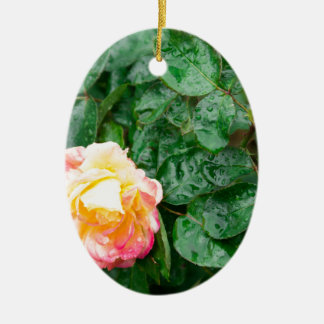Fading autumn rose with droplets ceramic ornament