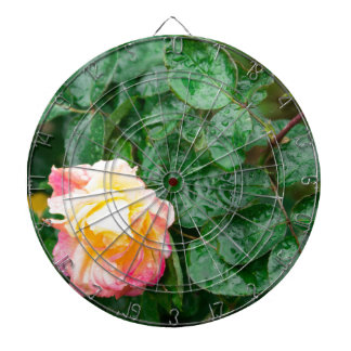 Fading autumn rose with droplets dartboard with darts