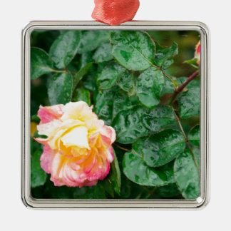 Fading autumn rose with droplets metal ornament