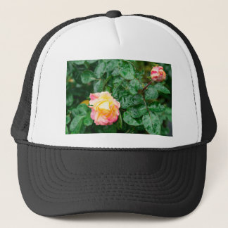 Fading autumn rose with droplets trucker hat