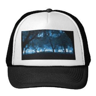 faerie woods mesh hat