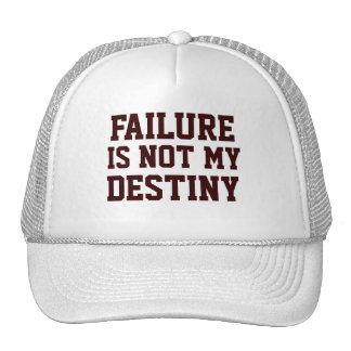 Failure Is Not My Destiny Men's - Women's Pink Hat