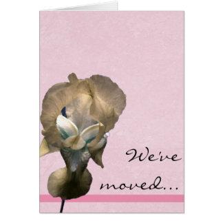 Faire-part de photographie d'iris jaune carte de correspondance