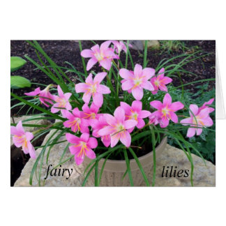 Fairy Lily Note Cards
