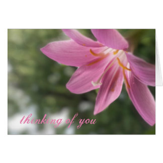 Fairy Lily -- Thinking of You Blank Card