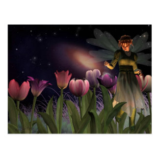 Fairy night Postcard