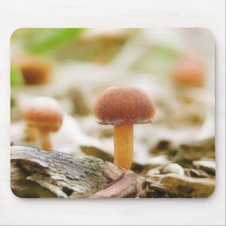 Fairy Ring Mushrooms Mouse Pads