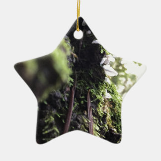 Fairy Skirts Ceramic Star Ornament