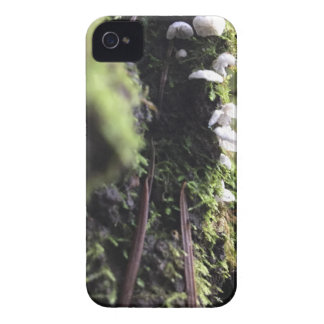 Fairy Skirts iPhone 4 Covers