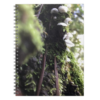 Fairy Skirts Spiral Notebook