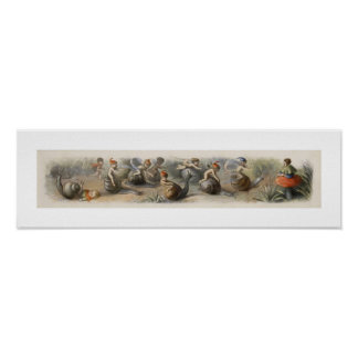 Fairy Wall Poster