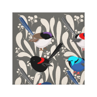 Fairy Wrens Canvas Print