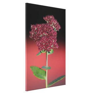 Fairytale Floral Canvas Print