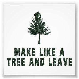 Faites comme un arbre et partez tirages photo