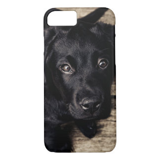 Faithful eyes of a Puppy dog iPhone 7 Case
