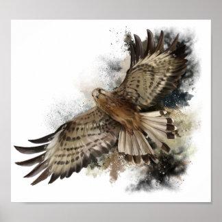 Falcon in flight poster