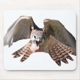 Falcon Mousepad