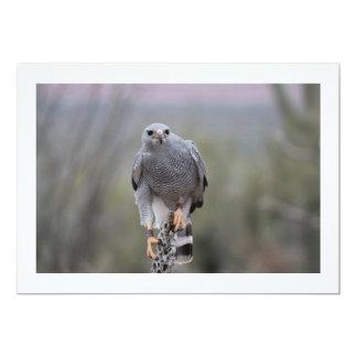 Falcon on Cactus Card