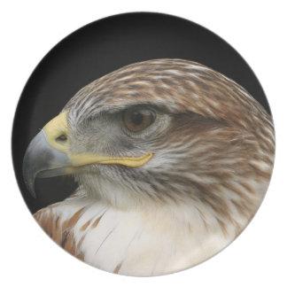 Falcon portrait dinner plates