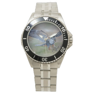 Falcon Stainless Steel Watch