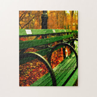Fall- A Seat in Central Park. Jigsaw Puzzle