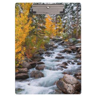 Fall along Bishop creek, California Clipboard