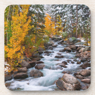 Fall along Bishop creek, California Drink Coaster