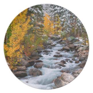 Fall along Bishop creek, California Party Plates