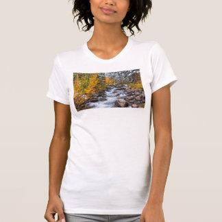 Fall along Bishop creek, California T-Shirt