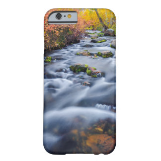 Fall along Lundy Creek, California Barely There iPhone 6 Case