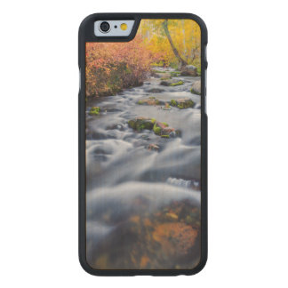 Fall along Lundy Creek, California Carved Maple iPhone 6 Case