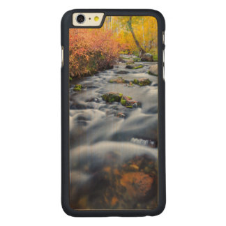 Fall along Lundy Creek, California Carved Maple iPhone 6 Plus Case
