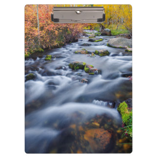 Fall along Lundy Creek, California Clipboard