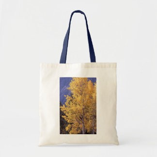 Fall aspen Tree Reusable Tote Bag