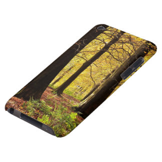 Fall autumn  Colors iPod Touch Case