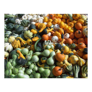 Fall Autumn Gourds Scrapbooking Paper Letterhead Template